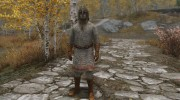 NorseViking Armor II for TES V: Skyrim miniature 4