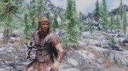 Imperial Chainmail Armor для TES V: Skyrim миниатюра 2