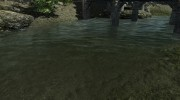 Pure Waters for TES V: Skyrim miniature 4