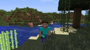 Animated Player for Minecraft miniature 4