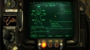 PipBoy 3002 для New Vegas for Fallout New Vegas miniature 1