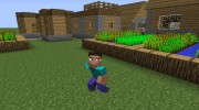 Animated Player for Minecraft miniature 8