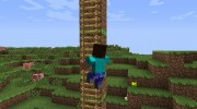 Animated Player for Minecraft miniature 7