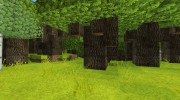 Willpack HD for Minecraft miniature 3