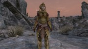 Craftable Elven Light Armor for TES V: Skyrim miniature 9