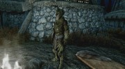 Craftable Elven Light Armor for TES V: Skyrim miniature 2
