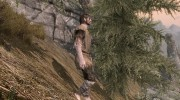 Brigandage for TES V: Skyrim miniature 3