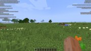 BetterFps 1.12.2 for Minecraft miniature 2