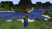 Animated Player for Minecraft miniature 6