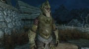 Craftable Elven Light Armor для TES V: Skyrim миниатюра 1