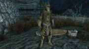 Craftable Elven Light Armor for TES V: Skyrim miniature 4