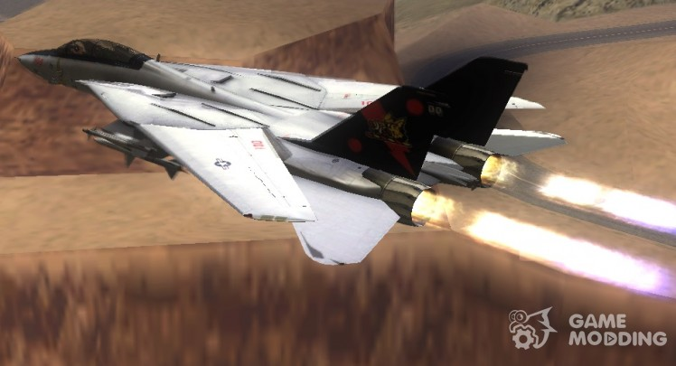 Grumman F-14B Bombcat