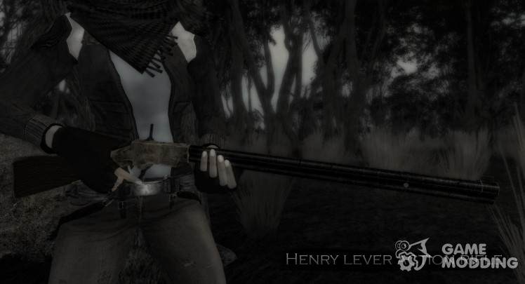 Henry rifle system