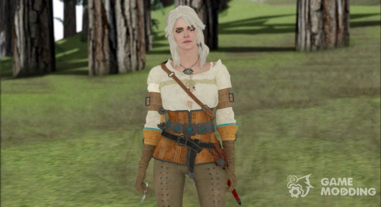 Ciri from Witcher 3 Retextured для GTA San Andreas