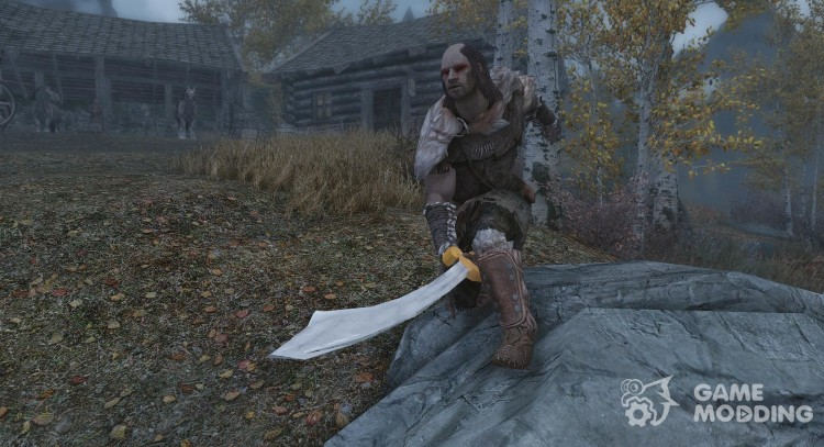 The Scallywag Swashbuckler for TES V: Skyrim