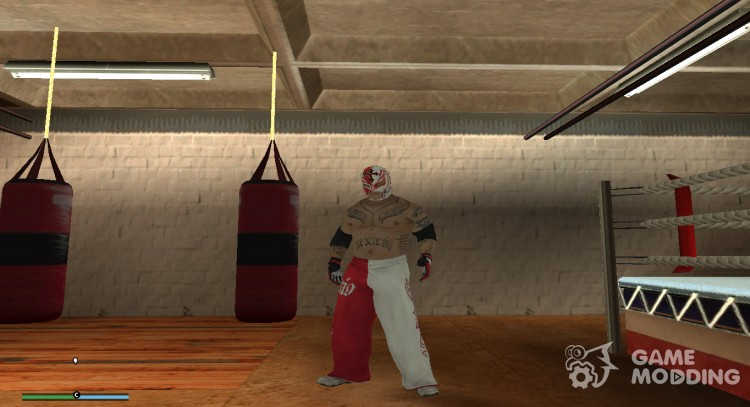 WWE Fighters for GTA San Andreas