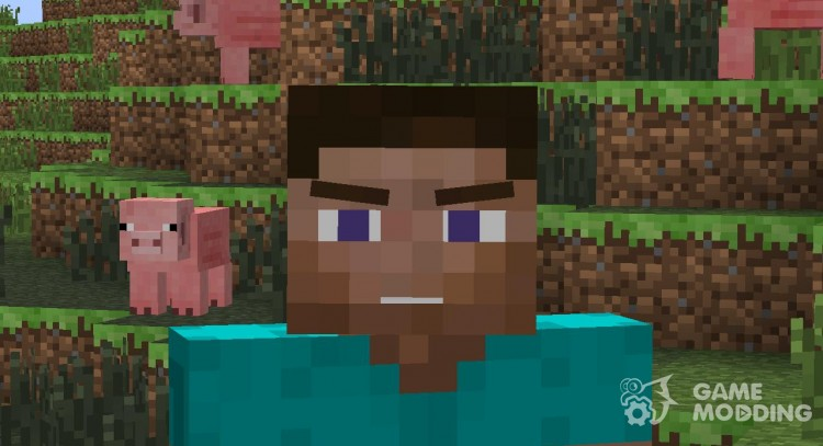 Animated Player for Minecraft