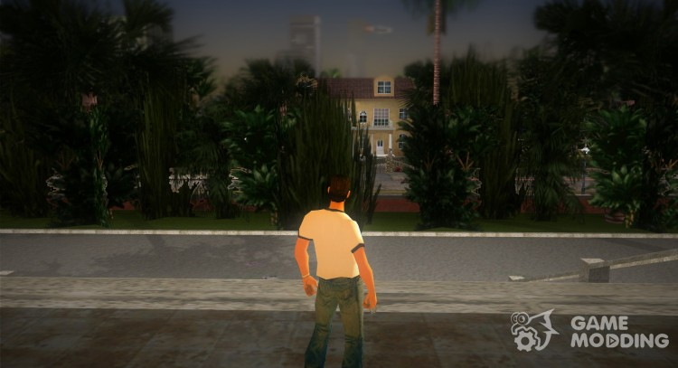 Animation IV for GTA Vice City