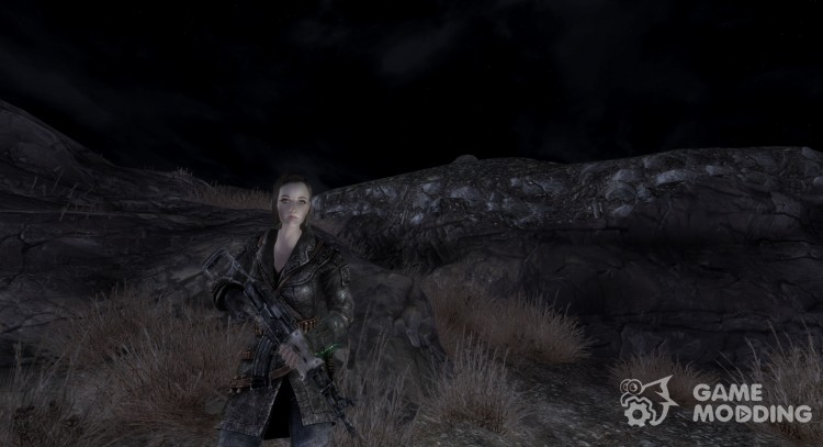 Chinese Assaultrifle from Fallout 3 for Fallout New Vegas