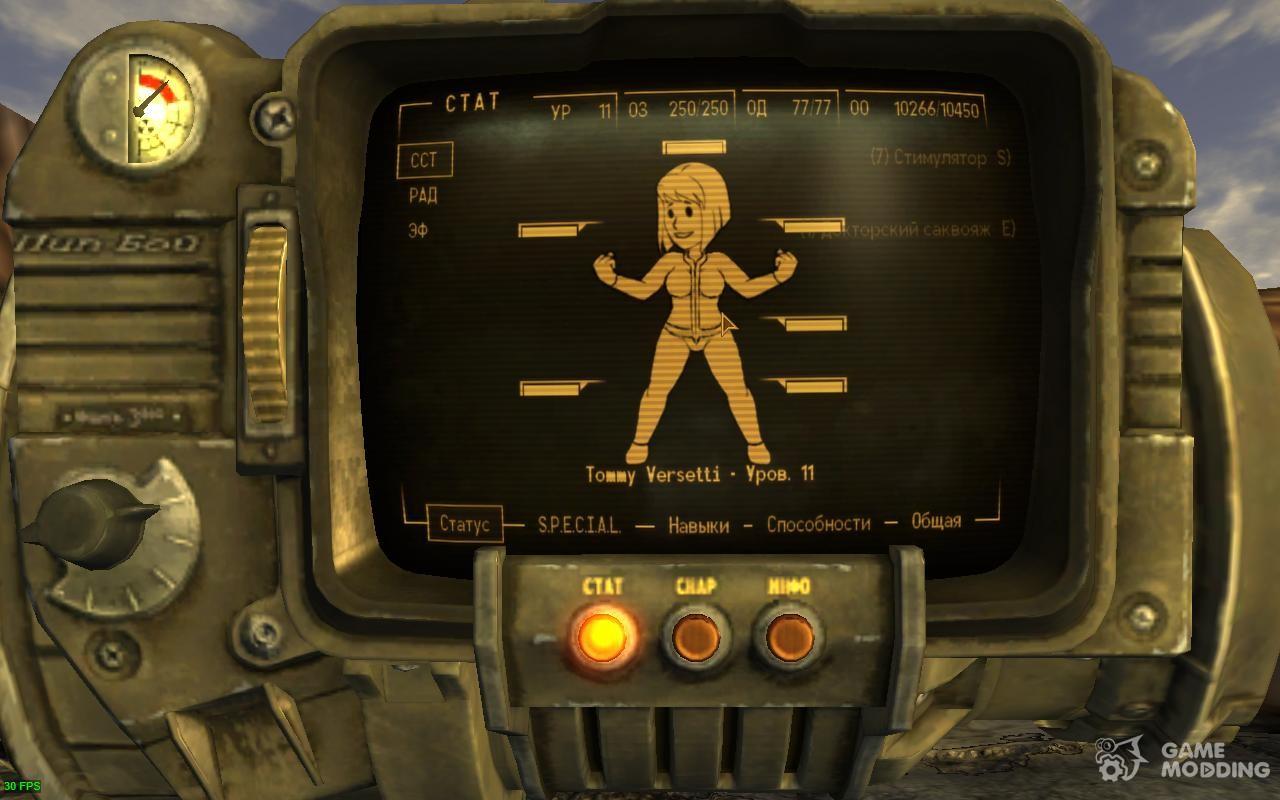 Fallout new vegas описание