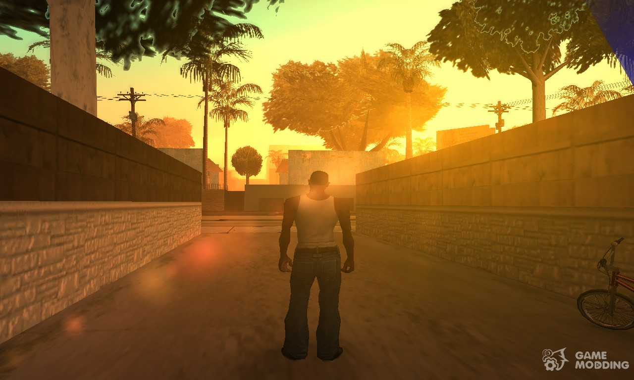 Gta san andreas mission photo opportunity ps2
