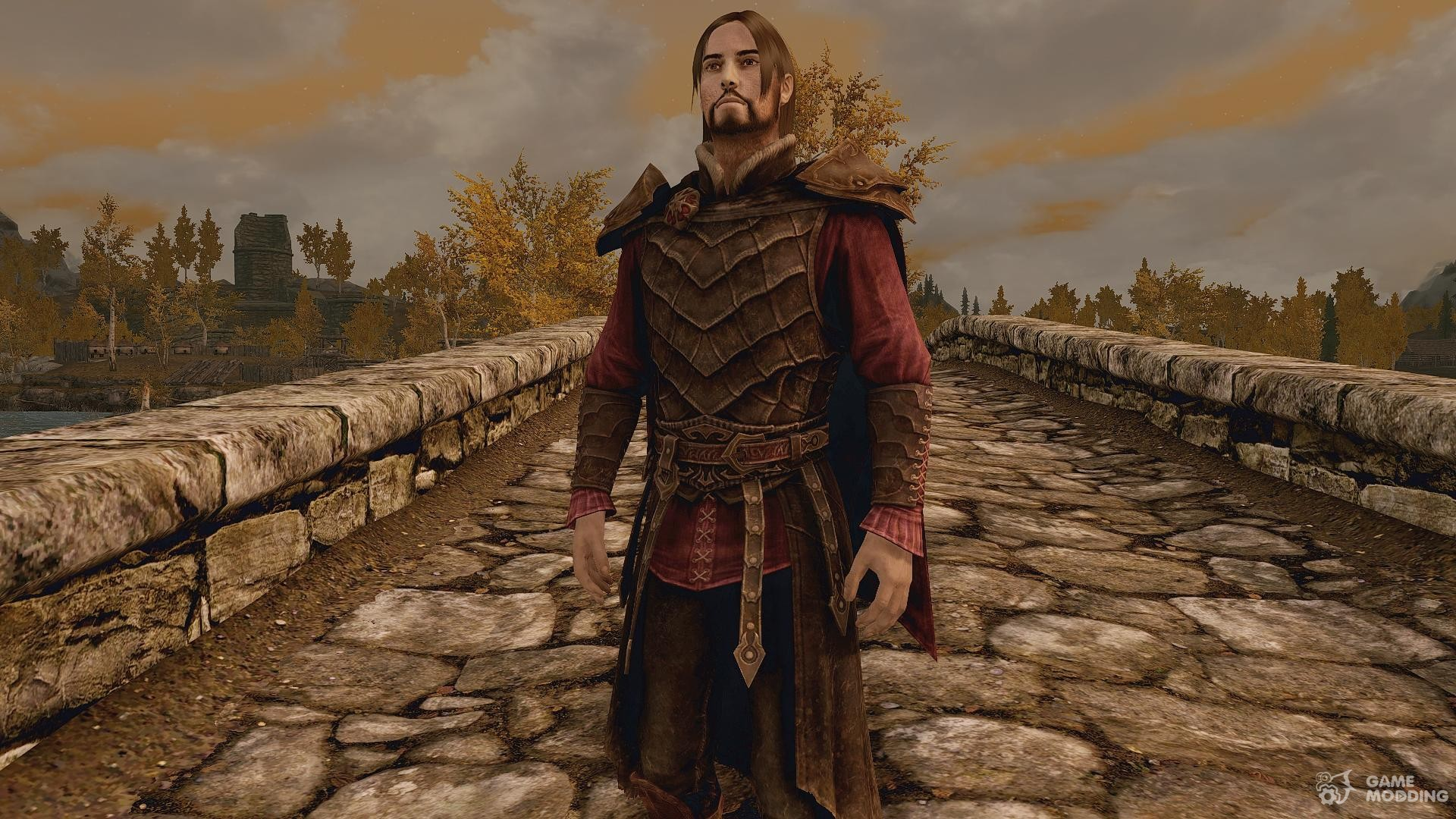 Скайрим броня вампира короля