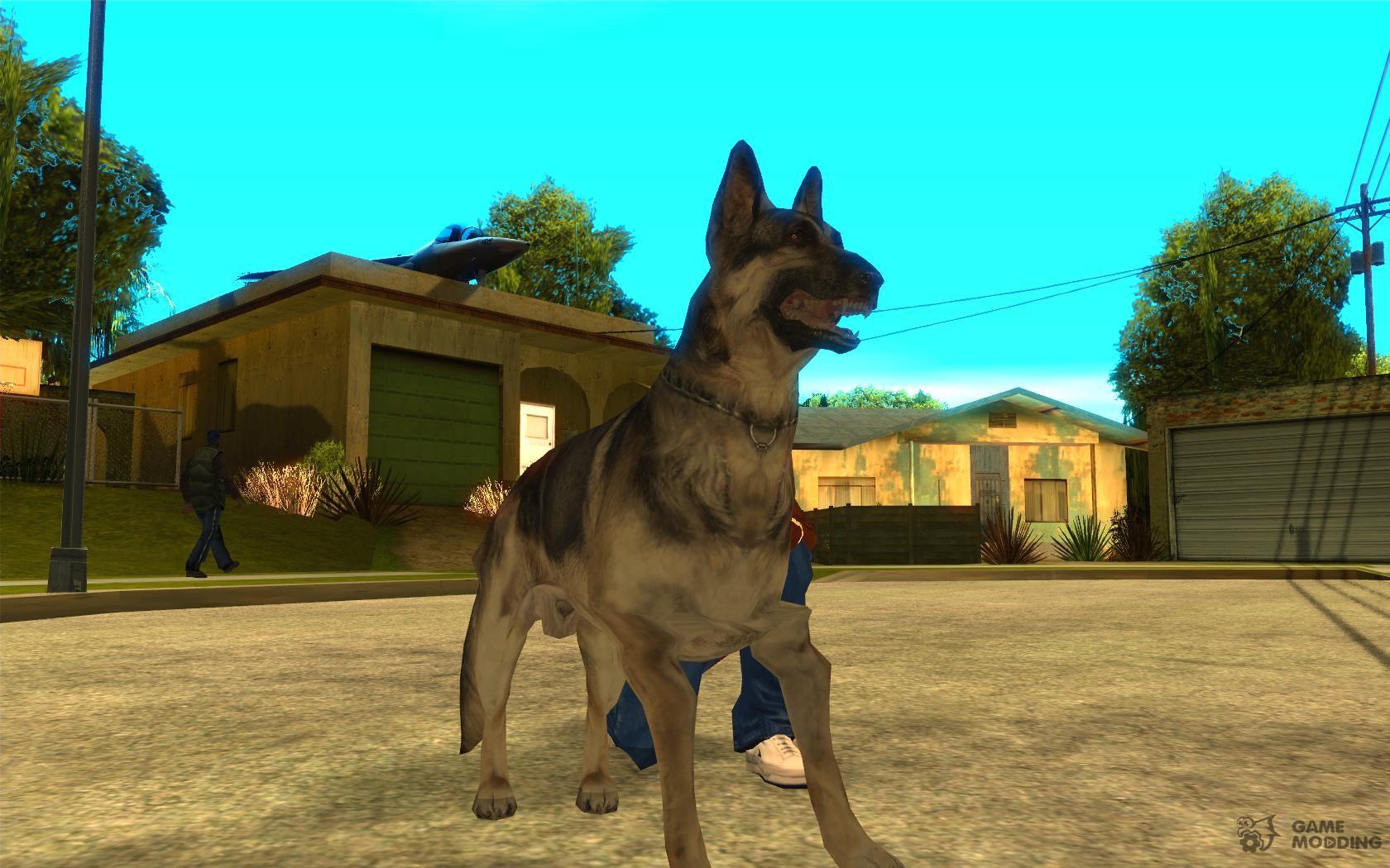 Собака в GTA San Andreas для GTA San Andreas