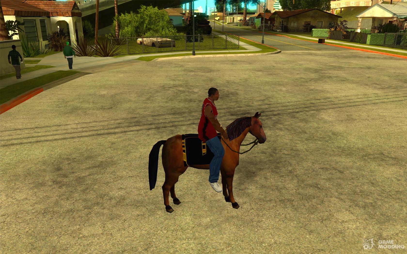 Gta san andreas gambling horse