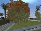 GTA 4 Vegetation for GTA San Andreas right view