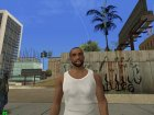 Carl Johnson INSANITY for GTA San Andreas inside view