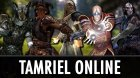 Tamriel Online v2.3.2