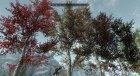 Различные цвета для деревьев for TES V Skyrim left view