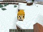 Мем В Бутылке для Minecraft вид слева