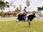 Езда на корове