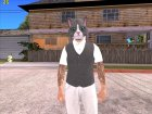 Skin HD GTA V in 2015 cat mask Online