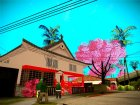 Japanese Castle CJ House and Beautiful Sakura Trees для GTA San Andreas вид сзади слева