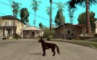 Цербер из Resident Evil 2 for GTA San Andreas left view