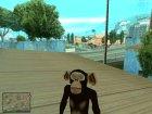 Madagaskar skin pack for GTA San Andreas
