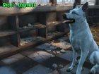 Белая собака «Призрак» для Fallout 4 вид сзади слева