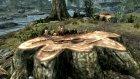 Эльфийский лук тьмы для TES V Skyrim вид справа