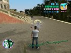 Save 100% in Starfish Island for GTA Vice City top view