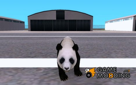 Panda Bear for GTA San Andreas