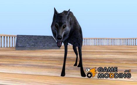 Волк for GTA San Andreas