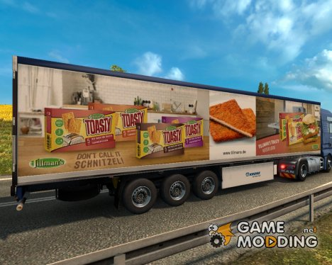 Cooler Tillmans for Euro Truck Simulator 2