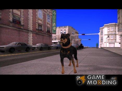 Ротвейлер for GTA San Andreas