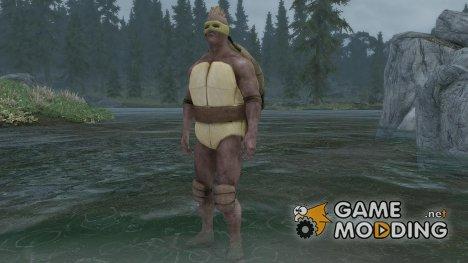 TMNT Armor for TES V Skyrim