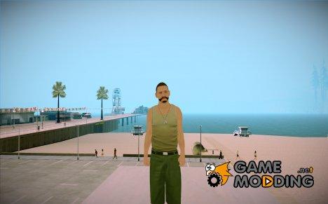 Wmyammo для GTA San Andreas