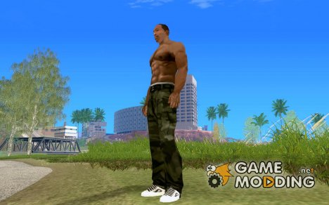 New Adio Skateshoes для GTA San Andreas