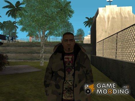 Winter skin v3 for GTA San Andreas