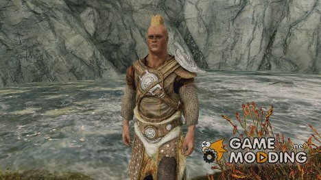 Studded Chainmail for TES V Skyrim